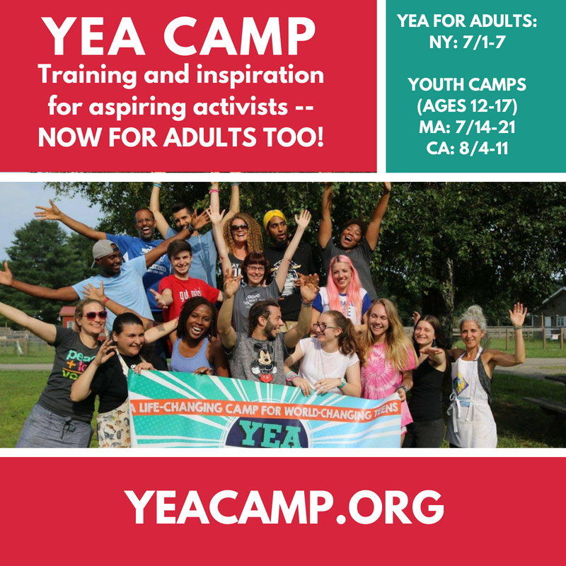 YEA Camp for Adults trains aspiring activists to make a bigger difference in the world.
