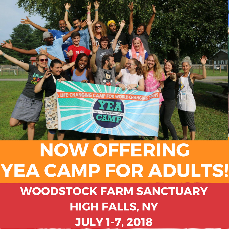 DETAILS - YEA CAMP FOR ADULTS!