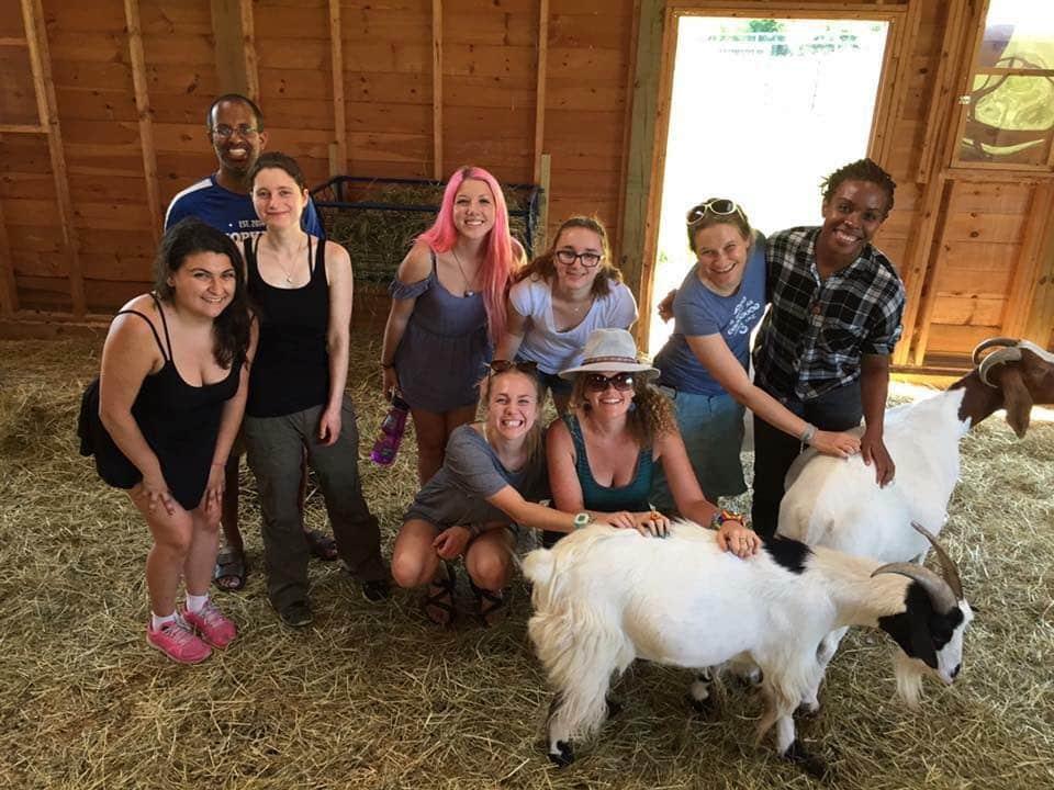 Woodstock Farm Sanctuary