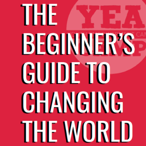 Beginners Guide to Changing the World Square