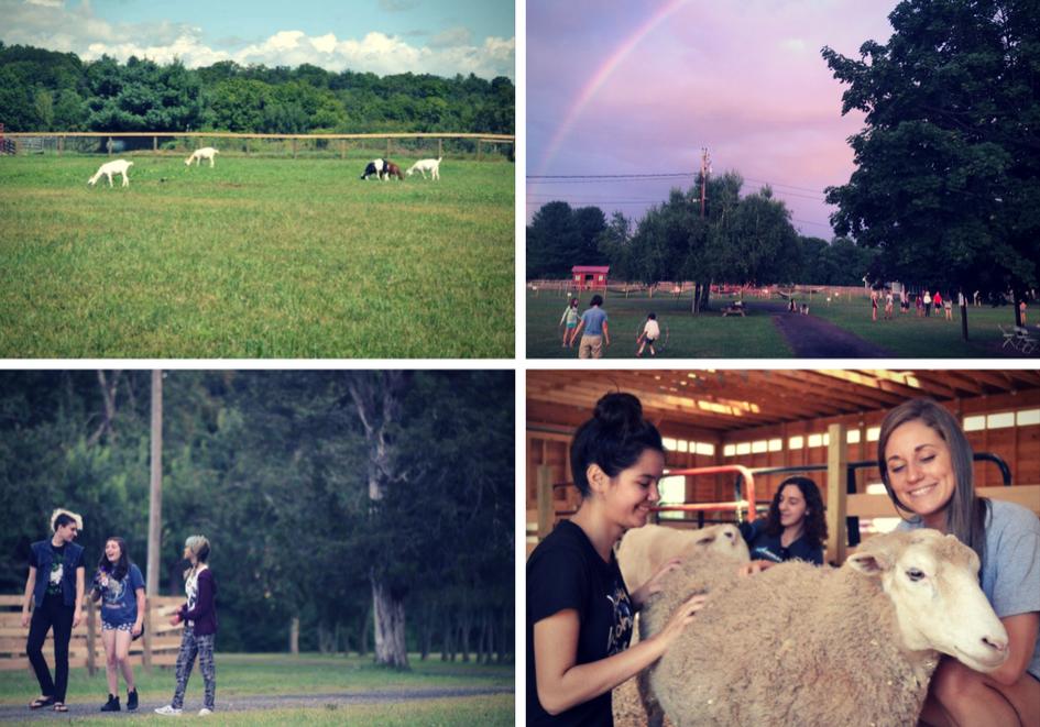 YEA-Camp_Woodstock-NY-Farm-Sanctuary (1)